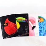SveskaA5_birds